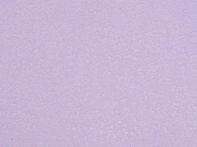 23薰衣草紫